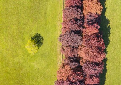 aerial photography from iSpyPixel
